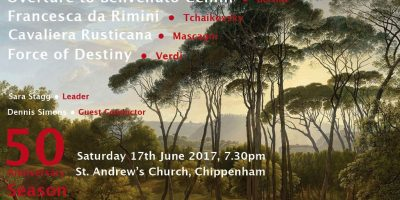 north wiltshire symphony orchestra show poster