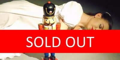Nutcracker sold out image